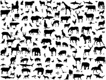 big collection of different animals silhouette - vector Stock Photo - Budget Royalty-Free & Subscription, Code: 400-04310522