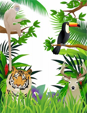Vector illustration of animal in the jungle Stock Photo - Budget Royalty-Free & Subscription, Code: 400-04349077