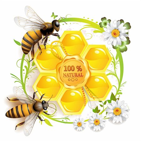 Two bees and honeycombs over floral background isolated on white Stock Photo - Budget Royalty-Free & Subscription, Code: 400-04353105