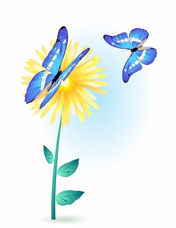 Painting card of yellow flower with blue butterflies Stock Photo - Budget Royalty-Free & Subscription, Code: 400-04367194