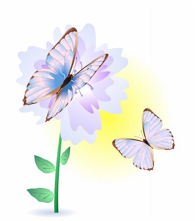 Vector illustration of blue flower with two butterflies Stock Photo - Budget Royalty-Free & Subscription, Code: 400-04367193