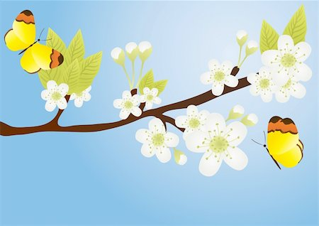 Vector illustration of apple-tree branch with butterflies over it isolated on blue Stock Photo - Budget Royalty-Free & Subscription, Code: 400-04367222