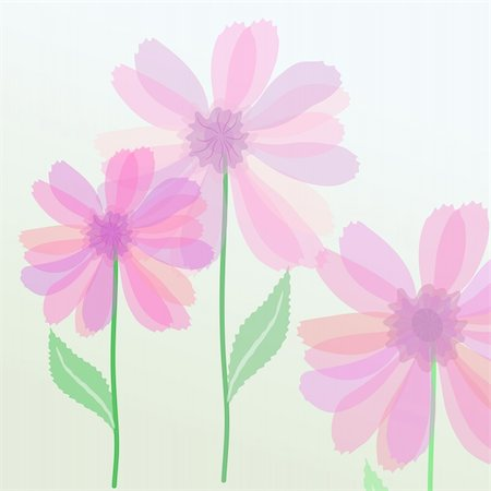 simsearch:400-04367218,k - Vector illustration of transparent purple flowers Stock Photo - Budget Royalty-Free & Subscription, Code: 400-04367233