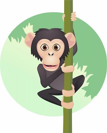 smiling chimpanzee - Chimpanzee cartoon Stock Photo - Budget Royalty-Free & Subscription, Code: 400-04362550