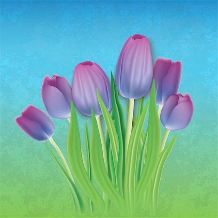 abstract floral background with purple tulips on blue Stock Photo - Budget Royalty-Free & Subscription, Code: 400-04375382
