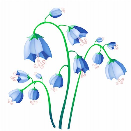 simsearch:400-04367215,k - Vector illustration of blue bells isolate on background Stock Photo - Budget Royalty-Free & Subscription, Code: 400-04370851