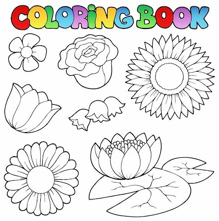 flower clipart paint - Coloring book with flowers set - vector illustration. Stock Photo - Budget Royalty-Free & Subscription, Code: 400-04387268