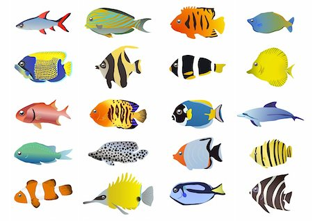 pressmaster - Set of tropical fishes, vector illustration Stock Photo - Budget Royalty-Free & Subscription, Code: 400-04388191