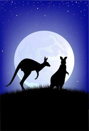 Australian kangaroo in the wild Stock Photo - Budget Royalty-Free & Subscription, Code: 400-04394373