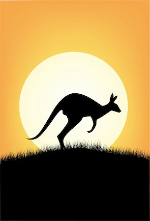 Kangaroo Australia Stock Photo - Budget Royalty-Free & Subscription, Code: 400-04392878
