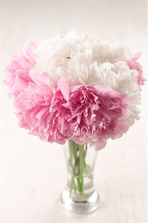 peonies background - Vase of beautiful peony flowers on wooden background Stock Photo - Budget Royalty-Free & Subscription, Code: 400-04406240