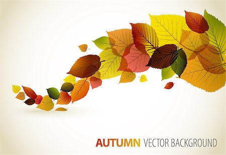 Autumn abstract floral background with place for your text Stock Photo - Budget Royalty-Free & Subscription, Code: 400-04418165