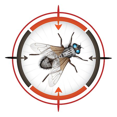 scope - Sniper target with housefly Stock Photo - Budget Royalty-Free & Subscription, Code: 400-04418710