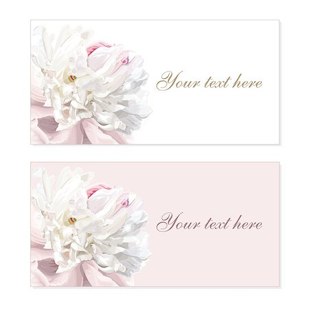 peony illustrations - Greeting cards with luxurious flower cards painted in pastel colors Stock Photo - Budget Royalty-Free & Subscription, Code: 400-04410075