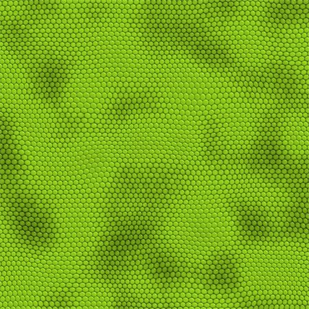 snake skin - a very large illustration of green iquana lizard or snake skin Stock Photo - Budget Royalty-Free & Subscription, Code: 400-04446805
