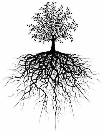 Editable vector illustration of a tree and its roots Stock Photo - Budget Royalty-Free & Subscription, Code: 400-04492043