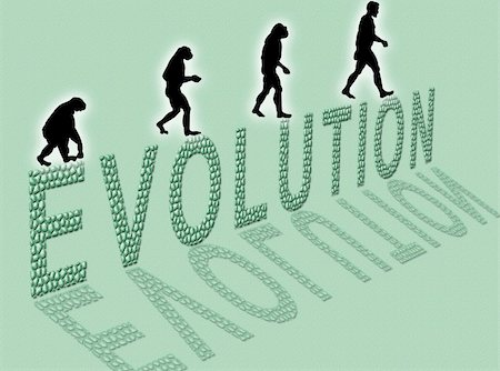 Illustration  about man?s evolution and a writing made of little stones Stock Photo - Budget Royalty-Free & Subscription, Code: 400-04508986