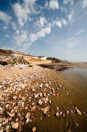 jurassic coast charmouth dorset Stock Photo - Budget Royalty-Free & Subscription, Code: 400-04503165