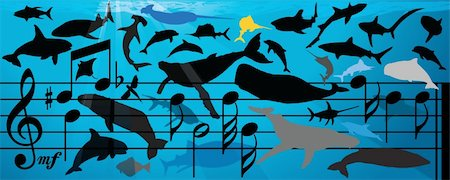 Vector Illustration of a huge variety of whale & fish from orca to tuna all in silhouette swimming over and around a bar of musical notes with a sun coming thru in the background. Stock Photo - Budget Royalty-Free & Subscription, Code: 400-04512942
