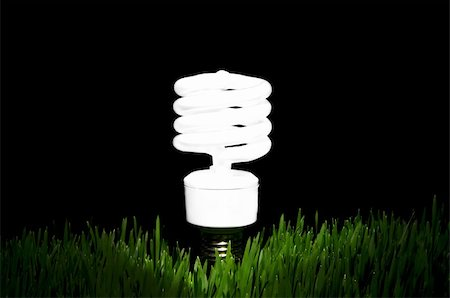Image of an energy efficient light bulb amidst green grass with black background Stock Photo - Budget Royalty-Free & Subscription, Code: 400-04585479