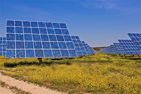 Solar panels in the power plant for renewable energy Stock Photo - Budget Royalty-Free & Subscription, Code: 400-04617951