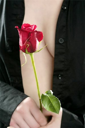 Beautiful woman body holding in hand a red rose Stock Photo - Budget Royalty-Free & Subscription, Code: 400-04629958
