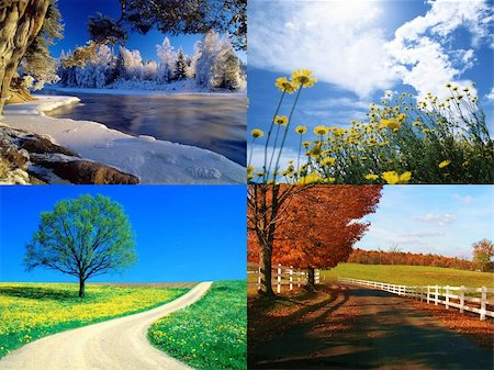 seasons collection Stock Photo - Budget Royalty-Free & Subscription, Code: 400-04620663