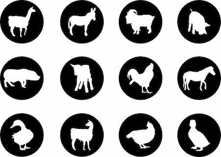 Animals. Set of 12 round vector buttons for web Stock Photo - Budget Royalty-Free & Subscription, Code: 400-04635156
