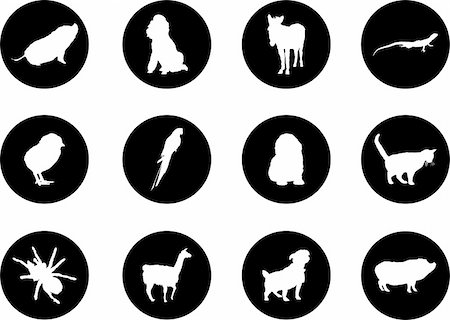 Animals. Set of 12 round vector buttons for web Stock Photo - Budget Royalty-Free & Subscription, Code: 400-04635157