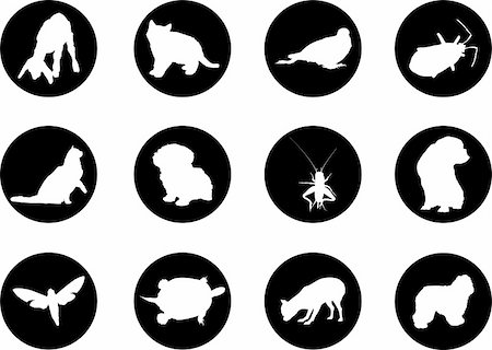 Animals. Set of 12 round vector buttons for web Stock Photo - Budget Royalty-Free & Subscription, Code: 400-04635158