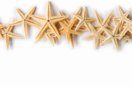 simsearch:400-04638538,k - Line of Starfish on a white background Stock Photo - Budget Royalty-Free & Subscription, Code: 400-04638538