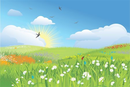 Colorfull meadow / flower and grass /  blue sky / vector Stock Photo - Budget Royalty-Free & Subscription, Code: 400-04663678