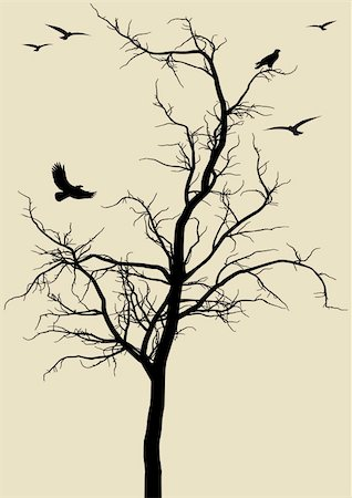 black tree silhouette with eagles, vector background Stock Photo - Budget Royalty-Free & Subscription, Code: 400-04678606