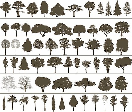 Set of black silhouettes of vector trees Stock Photo - Budget Royalty-Free & Subscription, Code: 400-04671770
