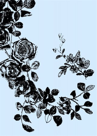rose illustration Stock Photo - Budget Royalty-Free & Subscription, Code: 400-04684499