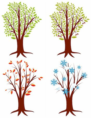 elegant tree drawings - Four trees in different seasons, element for design, vector illustration Stock Photo - Budget Royalty-Free & Subscription, Code: 400-04687983