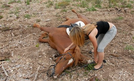 brown horse is falling with her riding teenager Stock Photo - Budget Royalty-Free & Subscription, Code: 400-04680166
