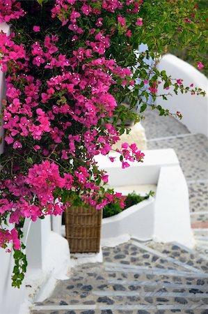 Santorini Stock Photo - Budget Royalty-Free & Subscription, Code: 400-04696033