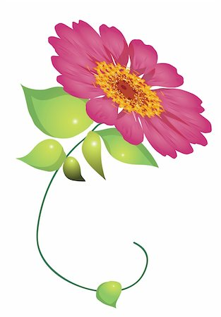 simsearch:400-04697977,k - illustration drawing of a red daisy flower with leaves in white background Stock Photo - Budget Royalty-Free & Subscription, Code: 400-04697531