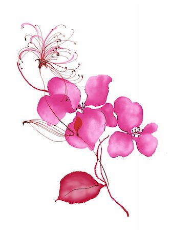 simsearch:400-04697977,k - watercolour drawing of red flower in a white background Stock Photo - Budget Royalty-Free & Subscription, Code: 400-04697979