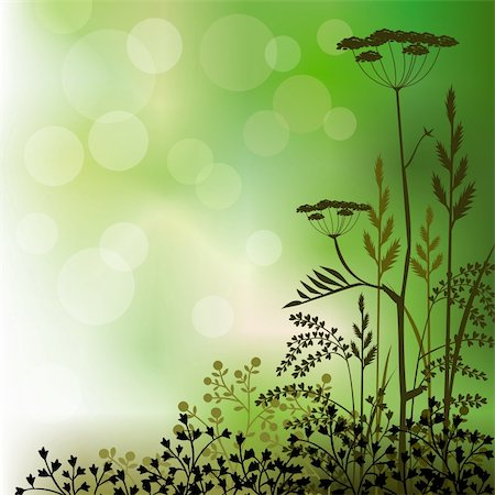 elakwasniewski (artist) - Floral background with grass and herbs on green. High resolution JPG image. Stock Photo - Budget Royalty-Free & Subscription, Code: 400-04698091