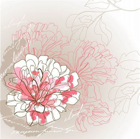 peony illustrations - Romantic background Stock Photo - Budget Royalty-Free & Subscription, Code: 400-04706297