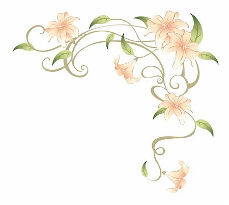 simsearch:400-04697977,k - drawing of beautiful flower in a white background Stock Photo - Budget Royalty-Free & Subscription, Code: 400-04700215