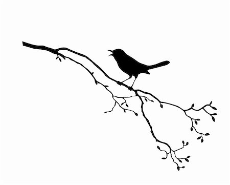 filigree tree - vector silhouette of the bird on branch tree Stock Photo - Budget Royalty-Free & Subscription, Code: 400-04735891