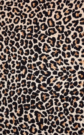 abstract texture of leopard skin Stock Photo - Budget Royalty-Free & Subscription, Code: 400-04746466