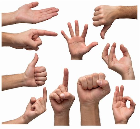 Isolated hands in various positions Stock Photo - Budget Royalty-Free & Subscription, Code: 400-04756399