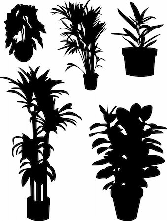 florist vector - flowers silhouettes - vector Stock Photo - Budget Royalty-Free & Subscription, Code: 400-04753597