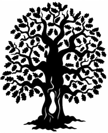 Oak tree silhouette - vector illustration. Stock Photo - Budget Royalty-Free & Subscription, Code: 400-04769341