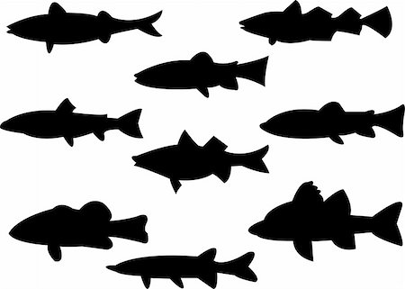 piranha fish - collection of fish silhouette - vector Stock Photo - Budget Royalty-Free & Subscription, Code: 400-04789416