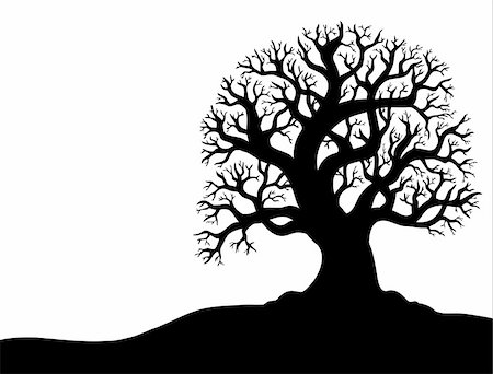 Silhouette of tree without leaf 1 - vector illustration. Stock Photo - Budget Royalty-Free & Subscription, Code: 400-04783958